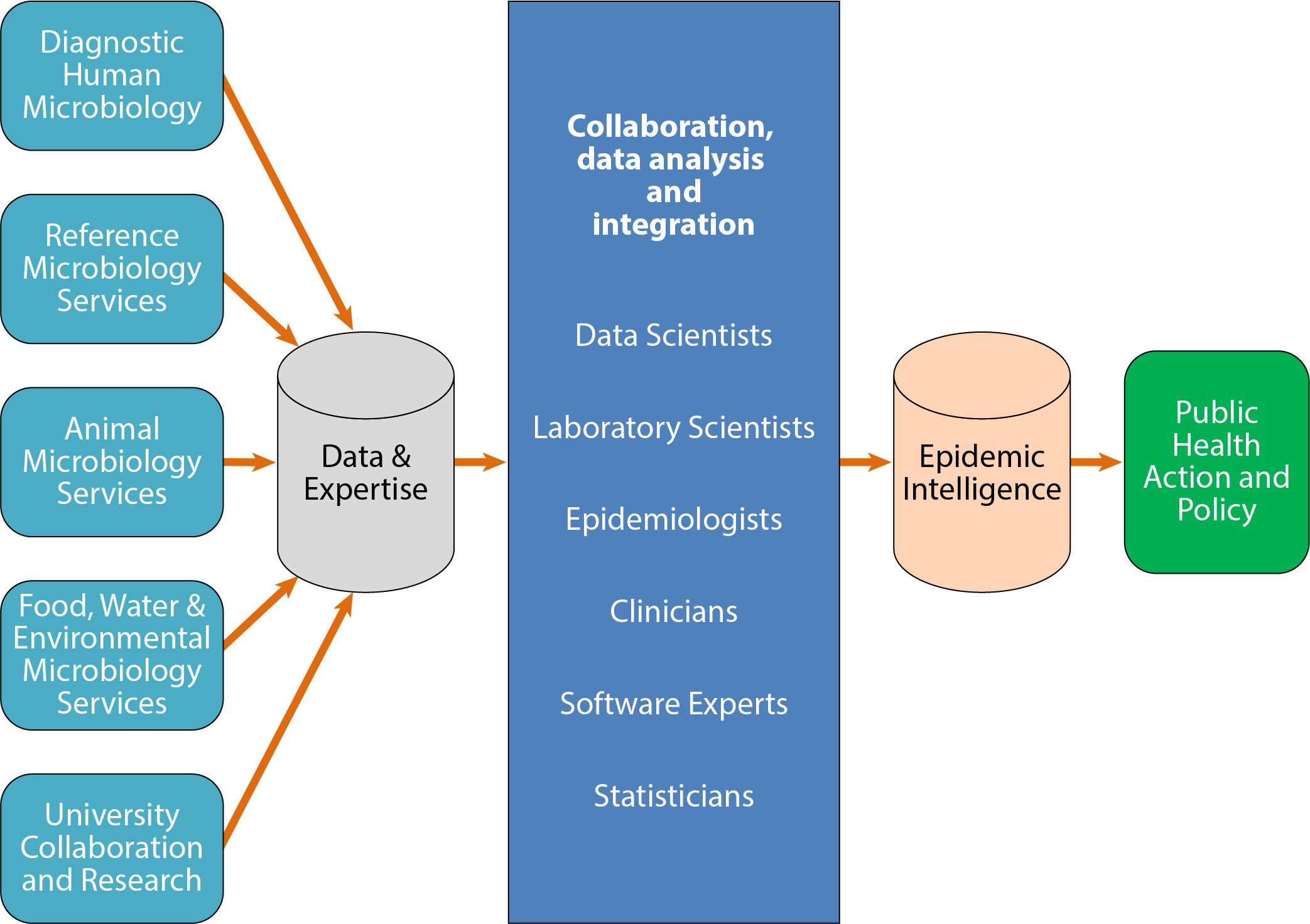 This flow diagram displays the key elements and outcomes for the Public Health Microbiology. Data feed is received by the information system from Diagnostic Human Microbiology and Reference Microbiology Services; Animal Microbiology Services; Food, Water & Environmental Microbiology Services, University Collaboration and Research. Expert advice on epidemic surveillance for collaboration, data analysis and integration is provided by Data Scientists, Laboratory Scientists, Epidemiologists, Clinicians, Software Experts and Statisticians to define and shape Public Health Action and Policy.